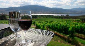 Thưởng thức rượu vang vùng Niagara và ngắm nhìn khung cảnh vườn nho xung quanh hồ chắc sẽ là mong ước của rất nhiều người
